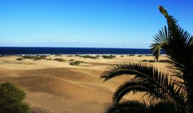 Bungalow an den D�nen Playa del Ingles zu verkaufen - Erste Strandreihe Gran Canaria