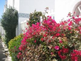 Foto 13 Bungalow mit Garten Gran Canaria zu verkaufen - Monte Golf