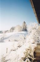 Foto 5 Bungalow Kärnten zu verkaufen