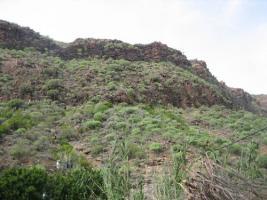 Foto 9 Bungalow zu vermieten Gran Canaria