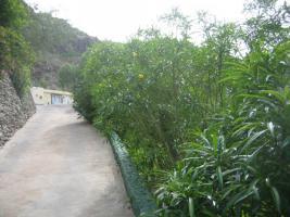 Foto 10 Bungalow zu vermieten Gran Canaria