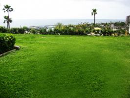 Foto 16 Bungalow / Appartement im Aquamarina / Patalavaca - Gran Canaria zu verkaufen
