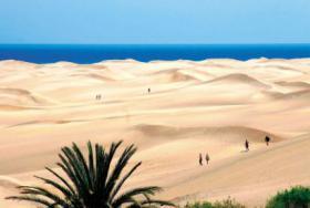 Foto 2 Bungalowanlage Playa del Ingles zu verkaufen - Gran Canaria