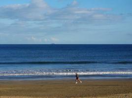 Foto 3 Bungalowanlage Playa del Ingles zu verkaufen - Gran Canaria