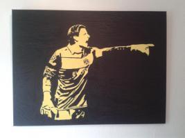 BvB Borussia Dortmund Spielerportraits