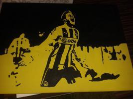 Foto 2 BvB Borussia Dortmund Spielerportraits