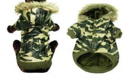 '' Camouflagehundemantel ''