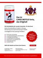 Canis Motus forte, das Original – Die Gelenktablette für den Hund der neusten Generation.