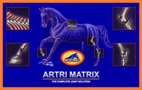 Cavalor Artri Matrix sachets fuer Gelenke und Synovianotwendigen Nährstoffe.