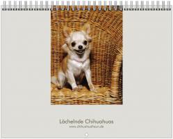 Chihuahua Kalender 2012 ''L�chelnde Chihuahuas''