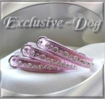 Foto 2 Chihuahua XS mini Prager Rattler Strasshalsband Strass Halsband Leder''EXCLUSIVE-DOG''