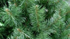 Foto 4 Christbaum Weihnachten Weihnachtsbaum Kunststoffbaum Tanne LUX