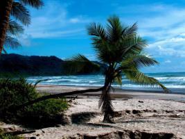 Foto 8 Costa Rica - Pura Vida - Mar Verde Lodge