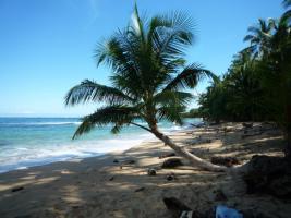 Foto 10 Costa Rica - Pura Vida - Mar Verde Lodge