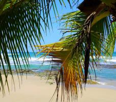 Foto 11 Costa Rica - Pura Vida - Mar Verde Lodge