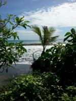 Foto 14 Costa Rica - Pura Vida - Mar Verde Lodge