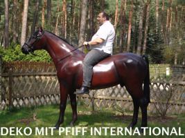 Foto 3 DECO HORSE LEBENSGROSS WAS SOLLN WIR SCHREIBEN ...