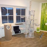 Foto 5 Das Katzenhotel Bonn hat noch wenige Plätze frei!!