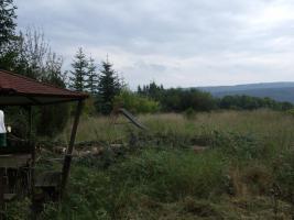 Foto 6 Daxweiler / Stromberg Feriengrundstück