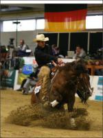 Foto 2 Deckanzeige - Ausdrucksvoller erfolgreich Reining Open geshowter QH Deckhengst  SB Buddy Kilebar Jac - Platz 19 der erfolgreichsten QH Vererber DQHA Ovator Fohlenschauen 2011 !