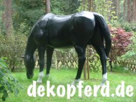 Foto 3 Deco Horse als Deko Für Ihr Geschäft … zum grasend oder …