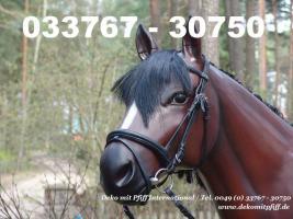 Foto 2 Deko Kuh oder Deko Pferd lebensgross � www.dekomitpfiff.de