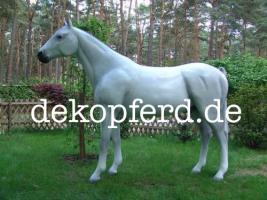 Foto 5 Deko Pferde / Horses - oder Deko Kühe ...