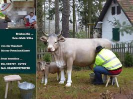 Foto 2 Deko kuh als Schaufensterwerbung … www.dekomitpfiff.de