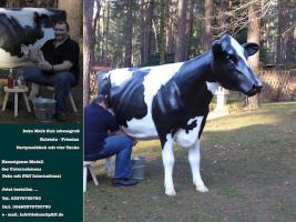 Foto 4 Deko kuh als Schaufensterwerbung … www.dekomitpfiff.de
