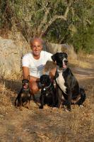Der Hundeflüsterer José Arce besucht Sie zu Hause