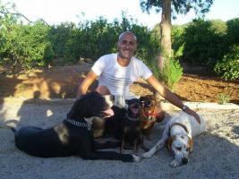 Foto 2 Der Hundeflüsterer José Arce besucht Sie zu Hause