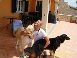 Foto 4 Der Hundeflüsterer José Arce besucht Sie zu Hause
