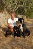 Der Hundeflüsterer von Mallorca