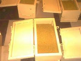 Der Verkauf von Goldbarren und Gold-Staub