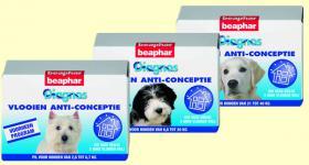 Foto 3 Diagnos Flohbekämpfung Hund