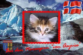 Die Norweger von Asyriss