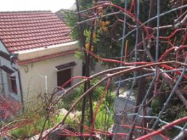 Die schoene Villa auf Korfu ist nur 10 m vom Meer gelegen/Griechenland