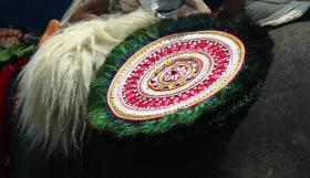 Foto 3 Die vergoldeten Ornamente für Elefanten und handgemachte bunte dekorative Schirme aus Indien.