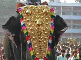 Foto 4 Die vergoldeten Ornamente für Elefanten und handgemachte bunte dekorative Schirme aus Indien.