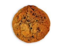 Foto 3 Dinkel Heidelbeer/Schoklade Cookies mmm.