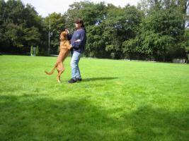 Foto 9 Dogdance für Jederhund - mit handicap - graue Schnauze - oder gesund und Hundfreunde mit handicap