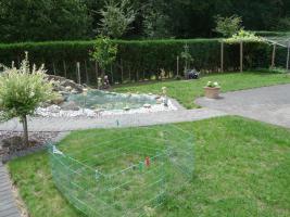 Foto 2 Doppelhaushälfte in 33442 Herzebrock-Clarholz