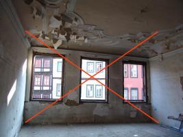 Foto 6 Dr.Kater Carlo sucht Wohnung oder Haus zu mieten oder kaufen