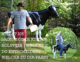Foto 2 Du kanst ne kleine Deko Kuh erhalten Du kannst ne mittelgrosse Deko Kuh erhalten und Du kannst ne grosse Deko Kuh erhalten na wie Wärs mit der Grosse Holstein Kuh ..