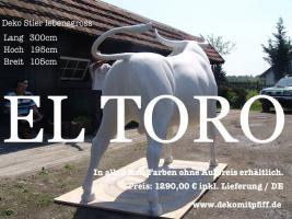 Foto 4 Du möchtest ne Deko Kuh mit Deinen Firmenlogo ?