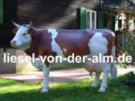 Foto 2 Du willst eine Deo Bullen … ok. und noch eine Deko Kuh .. ok. Tel. 03376730750