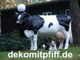 Foto 5 Du willst eine Deo Bullen … ok. und noch eine Deko Kuh .. ok. Tel. 03376730750