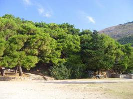 Park Gradac (20m)