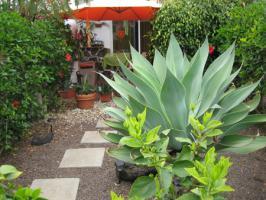 Foto 11 Duplex im Sonnenland zu vermieten / Gran Canaria