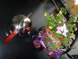 Foto 6 Edelstahl Teekanne Teekocher Teekessel, Wasserkessel als Blumentopf Übertopf